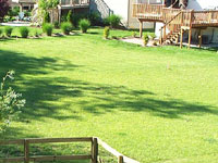 Sun & Shade Blend Grass seed is available for sale at Fertimix in Jordan, Minnesota.